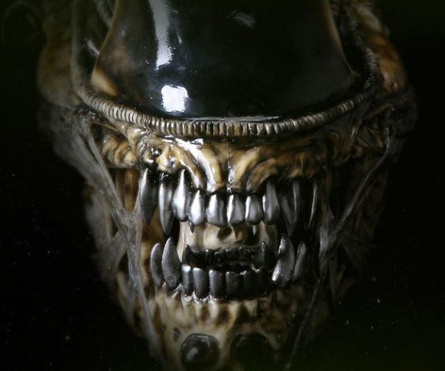 Life Size Alien Warrior Head