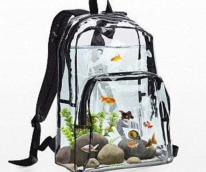 Aquarium Backpack 300x250 Jpg