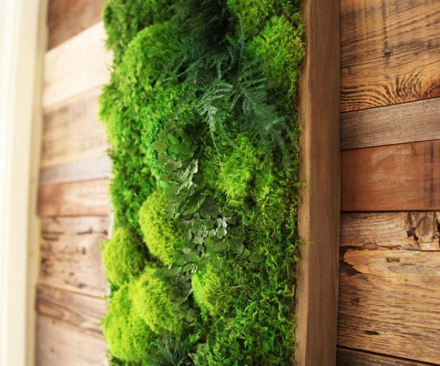 Artisan moss plant art for Natural moss bath mat