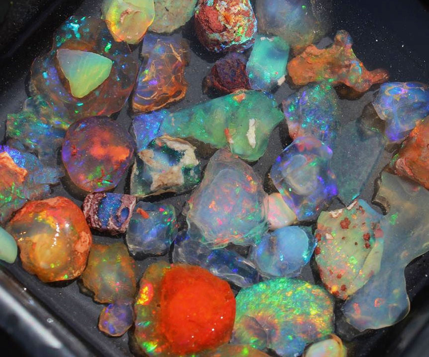 Assorted Fire Opals