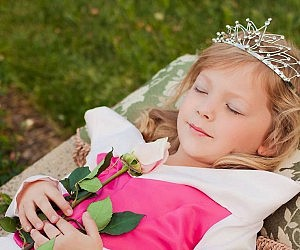 Children S Sleeping Beauty Costume