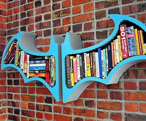 Batman Arkham Asylum Bookshelf