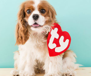 Beanie Baby Tag Dog Costume