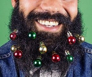 Glitter beard kit beard baubles solutioingenieria Gallery