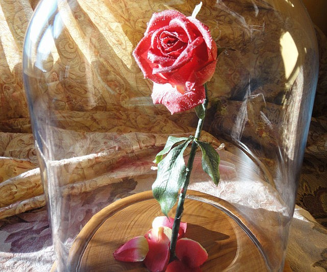 f236a38d6a4c Beauty And The Beast Enchanted Rose