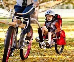 Pro Bike Trailer