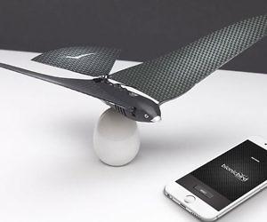 Remote Control Flying Bion...
