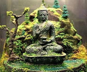 Ancient Buddha Zen Garden Terrarium
