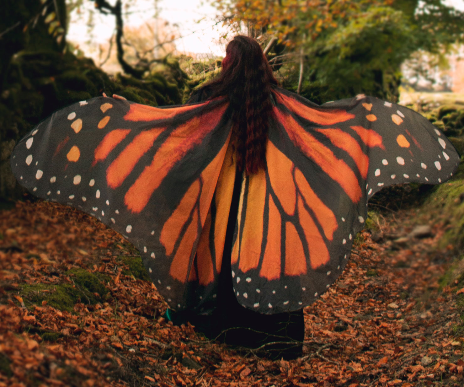 Butterfly Cloak