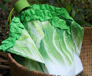 Cabbage Umbrella