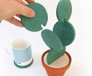 Cactus Plant Shaped Coaster Set