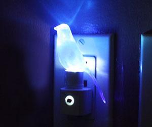 Blue Canary Night Light