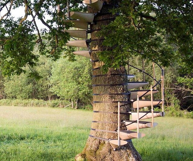 Tree Trunk Spiral Staircase