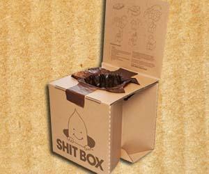 Cardboard Shit Box