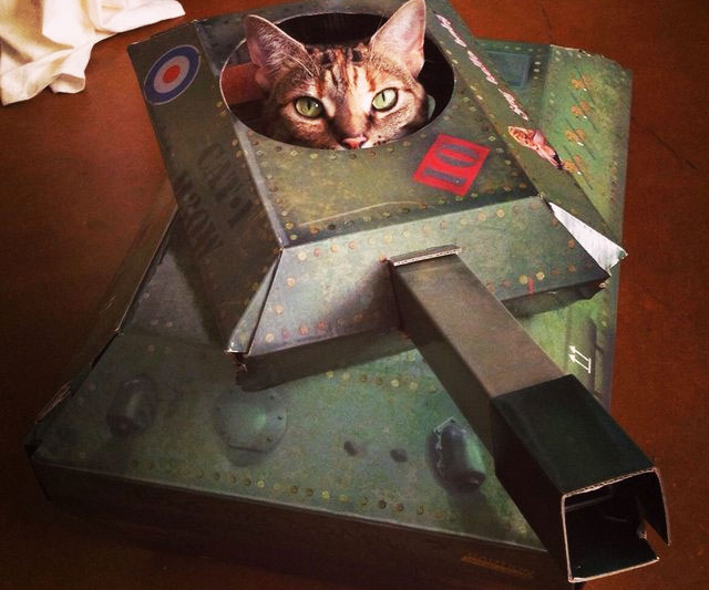 Cardboard Tank Cat Playhouse