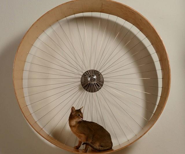 diy cat tower ideas