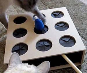 Cat Whac-A-Mole Toy