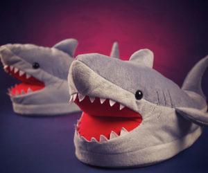 Chomping Shark Slippers a0b9c18d4b