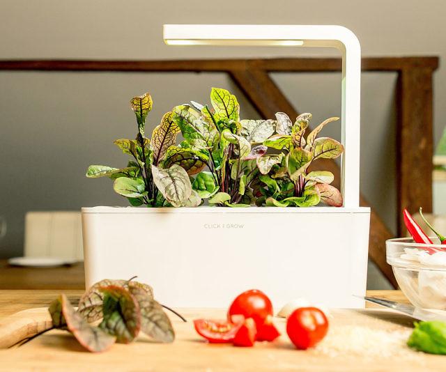 Smart Fresh Herb Garden Kit
