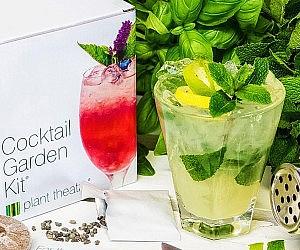 Mixed drink Garden Kit