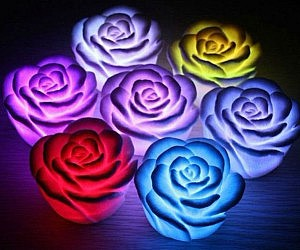 Color Changing Flower Lights