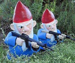 Combat Lawn Gnomes