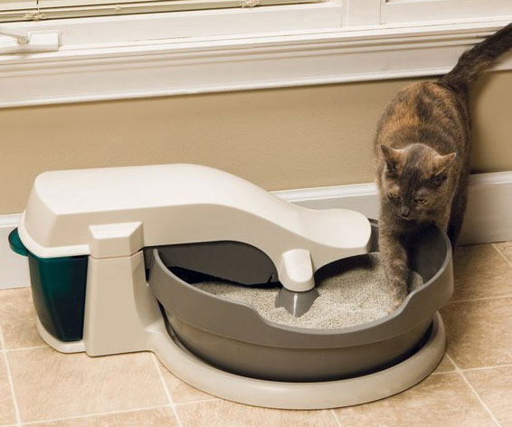 Continuous Cleaning Litter Box