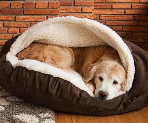 dog bed hammock bamboo hiconsumption
