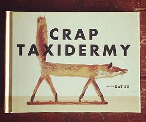 Mouse taxidermy kit crap taxidermy book solutioingenieria Images