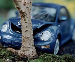 Crashed Model Car Bonsai Tree