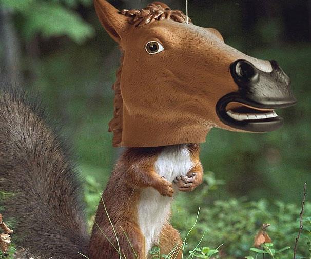 creepy horse head squirrel feeder
