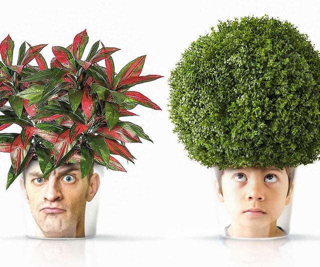 Face Plant Pot Part - 49: Personalized Face Flower Pots