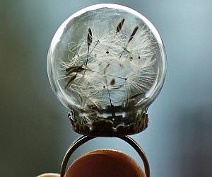 Dandelion Globe Ring