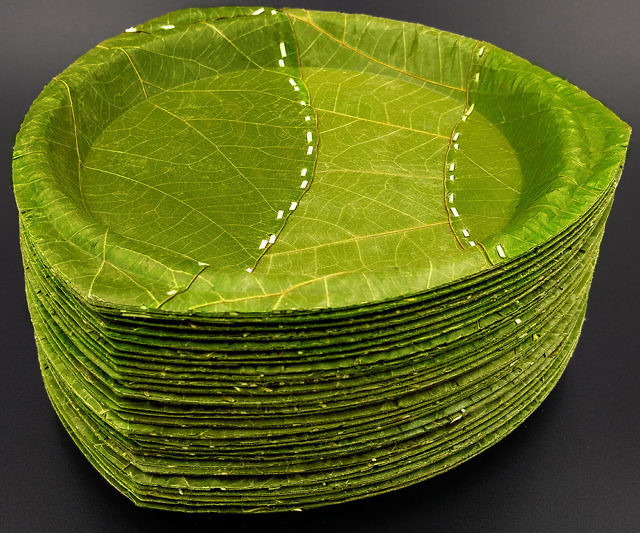 & Disposable 100% Leaf Plates