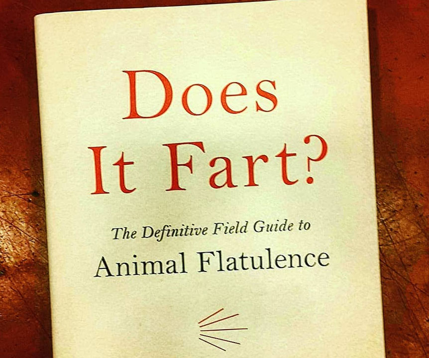 Does It Fart? - coolthings.us
