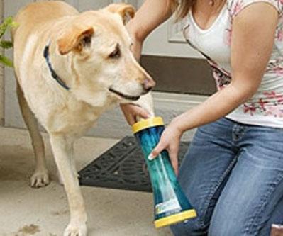 Dog Paw Wash Tool