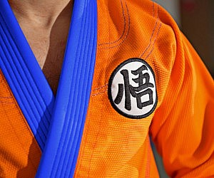 Dragon Ball Z Gi