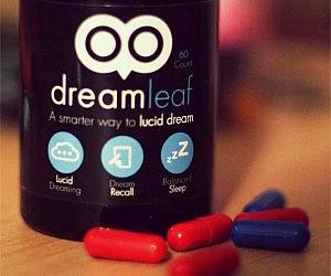 The Lucid Dreamer