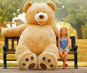 The Giant Teddy Bear