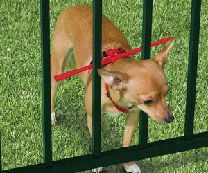 Escape Prevention Dog Harness