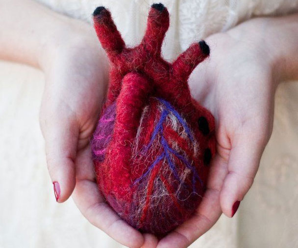 Anatomically Correct Felt Heart
