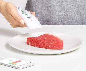 Food Freshness Tester