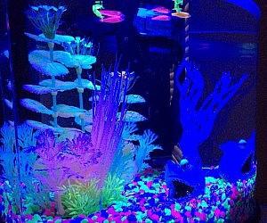 Fluorescent Coral Plant Aquarium Glow In The Dark Fish Tank Ornament Decor NYH