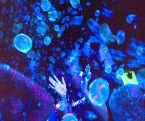 Glow In The Dark Bubbles - coolthings.us