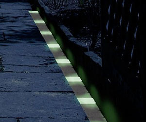 Glow In The Dark Path Markers
