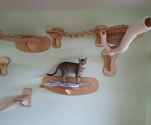 Wall Mounted Cat Furniture - Mounted Cat Furniture
