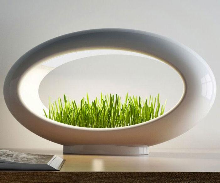 Grasslamp Minimalist Desktop Garden