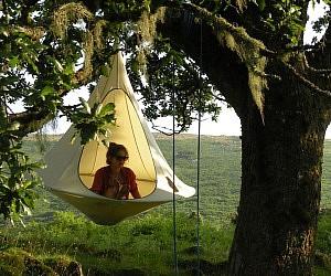 Hangout Nest