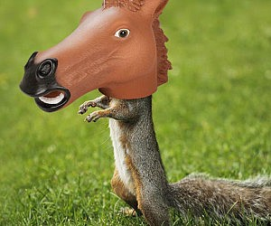 horse head squirrel feeder - Horses Head Pillow