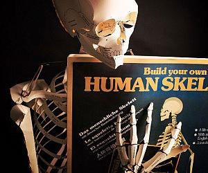 Build Your Own Skeleton Book